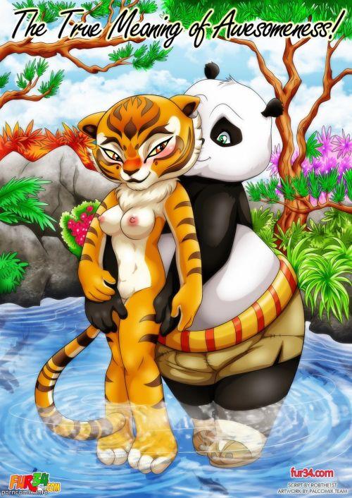 Kung Fu Panda- True Meaning of Awesomeness